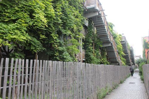 logements « Eden Bio » : les escaliers et les glycines