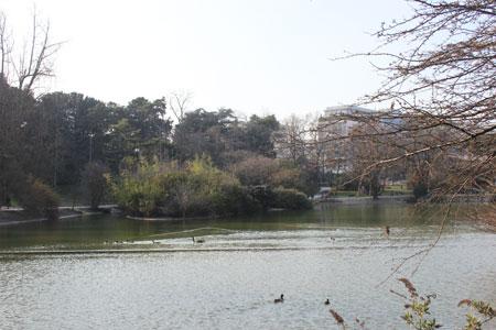 Le parc Montsouris : le lac