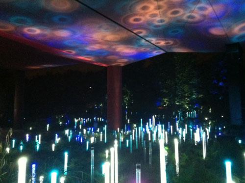 Le musée du Quai Branly - Le jardin la nuit