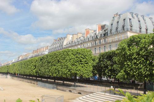 La rue de Rivoli - Vue du jardin des Tuileries