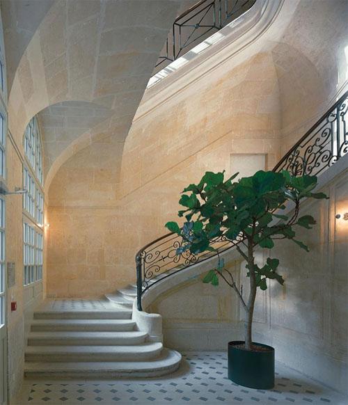 L'hôtel Colbert de Torcy - L'escalier d'honneur