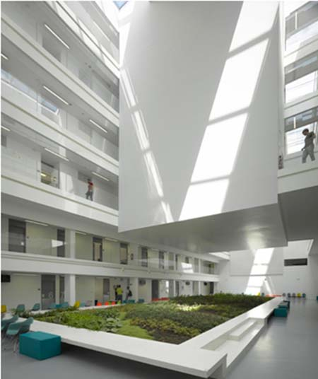 L'Institut Imagine - L'atrium