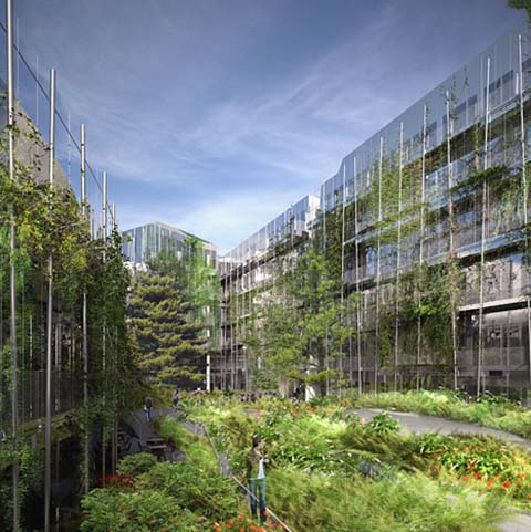 Bureaux Le Garance : jardin intérieur