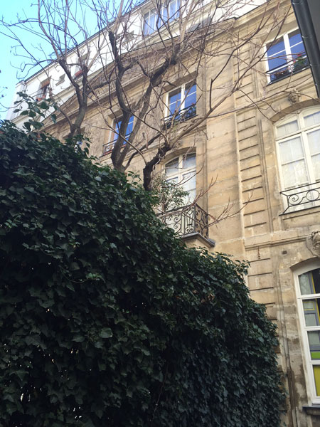 Hôtel particulier boulevard du Montparnasse - Façade sur jardin