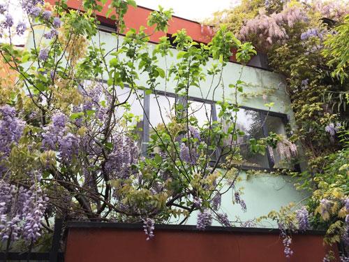 Le passage Bourgoin : une maison d'architecte enfouie sous la végétation