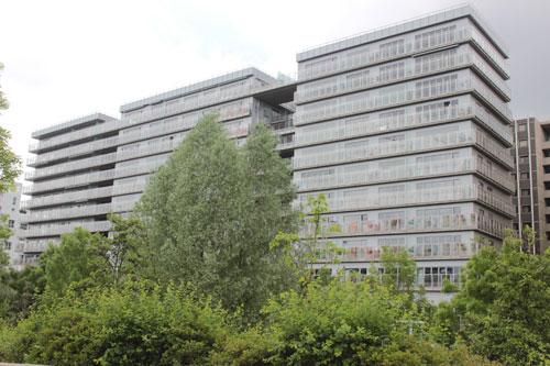 Logements et bureaux rue Bernard Buffet - Vue du parc Martin Luther-King