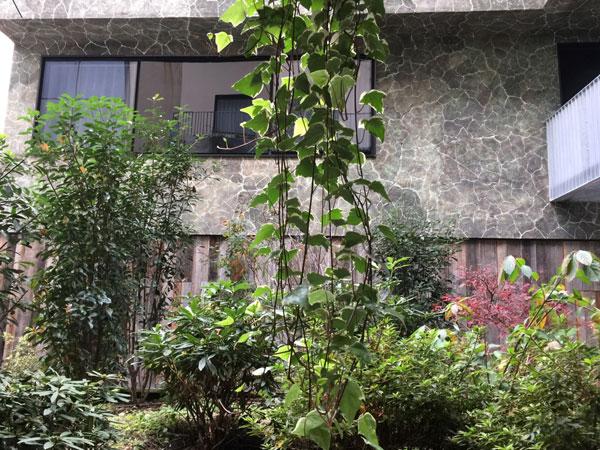 L'hôtel Parister : le jardin et au fond l'extension contemporaine