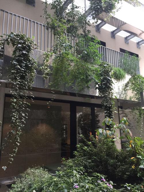 L'hôtel Parister : la terrasse végétalisée et l'extension contemporaine au fond