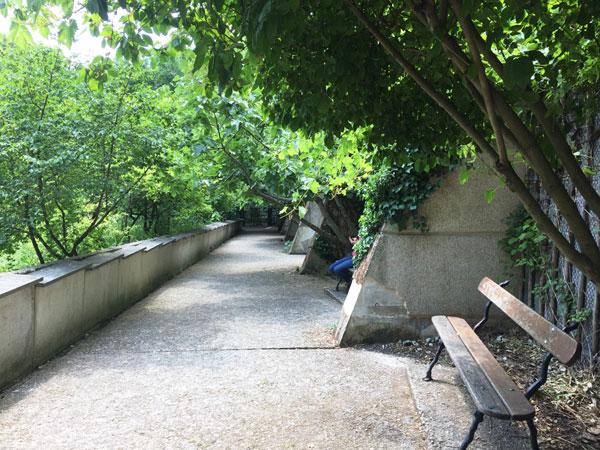 Le jardin naturel : la promenade haute