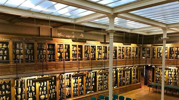 Le musée des Moulages